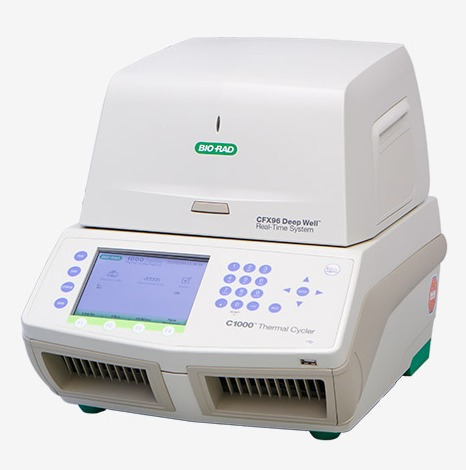 Bio-Rad qPCR machine for Microbial Analysis in Valens Labs